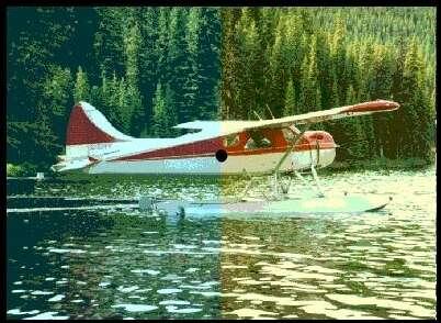 plane2.jpg (29167 bytes)